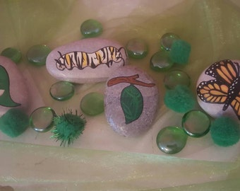 The life cycle of a butterfly stones