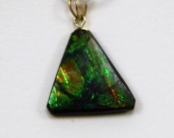 Contemporary designed 14k gold Ammolite pendant