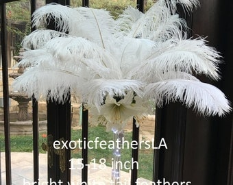 Large Bright White OSTRICH TAIL FEATHERS Stunning 15-18 inches Long Centerpiece feathers 1-100 pcs.
