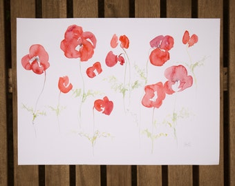 Poppy Fields, Watercolour Painting, Floral Artwork, Red Poppies