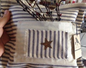 Primitive ticking pillow with pip berries and star
