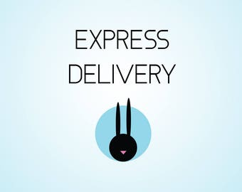 Express delivery for house bed