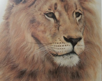 African Lion Lithograph by Charles Frace