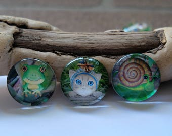 set of three fridge magnets, kitten, frog, snail, fridge magnets, animal fridge magnets. cabochon fridge magnets