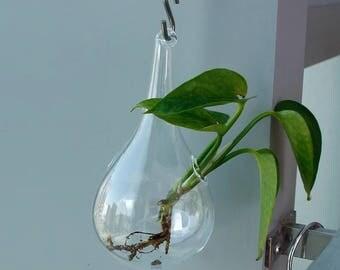 Clear Glass Hanging Vase Bottle Terrarium Container Plant Pot Flower DIY Table Wedding Garden Decor
