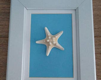 Framed starfish art