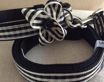 Hand made dog collar and lead