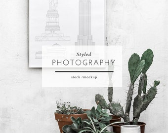 Styled Mockup Photography - Concrete Wall Frame, Wall Art, Stock Photo