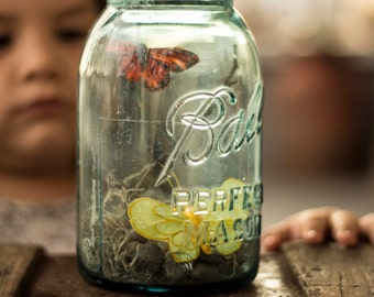 Butterflies in Jar Spring Decor, Centerpiece
