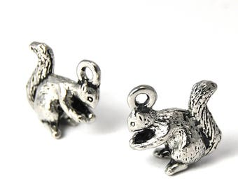 2pc, Squirrel Charm, Pewter