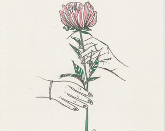 Hands Holding Flower A5 Illustration
