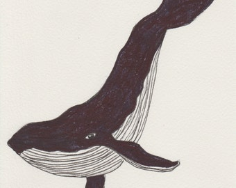 Whale A5 Illustration