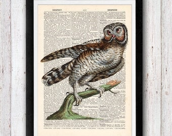 Owl Print / Bird Dictionary Art / Owl Wall Art Vintage Dictionary Page Book Art Print / Office Art, Wall Art Prints, Wall Decor