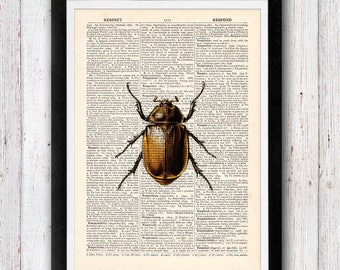 Beetle Insect Art Print / Insect Wall Print /  Nursery Wall Art / Insect Print /  Vintage Dictionary Page Book Print