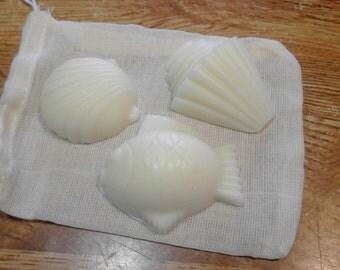 Fish and Shells Trio--Boddy Budder Buddies