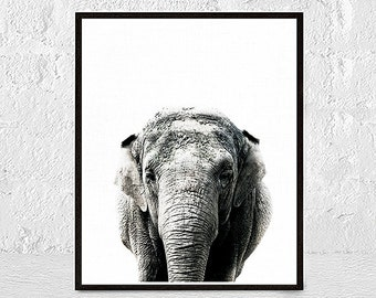 Elephant Print, Elephant Animal Print, Elephant Art, African Animal, Animal Art, Animal Print, Safari African, Elephant Nursery Decor