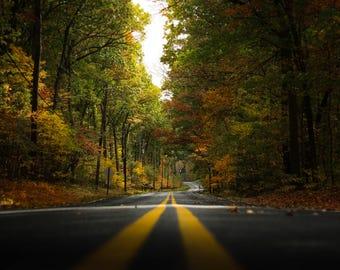 Fall Road Print