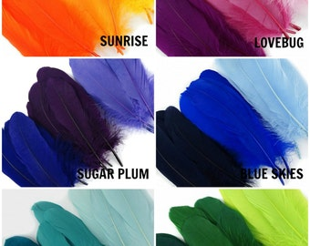 Dyed Goose Pallet Feather Mix - B204M