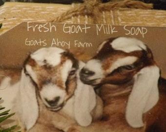 Orange Essential Oil Goats Milk Soap w/ Shea Butter