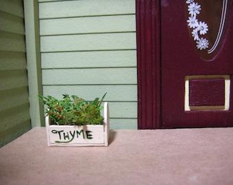 Dollhouse Miniature Wood Garden Box of Thyme Herbs 1:12 Scale Handmade for Your Mini or Fairy Garden