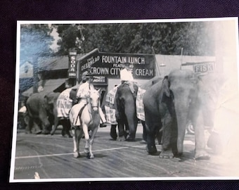 On Parade in San Jose, CA 1937 - Cole Brothers Circus - 5 x 7 - see description for details of photo