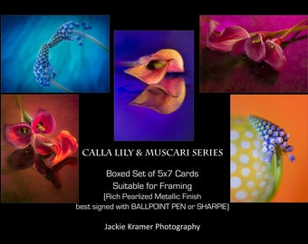 Floral Boxed Gift Cards - Calla Lily & Muscari Series