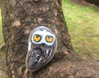 OWL, nature - owl, nature