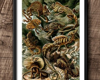 Lizards · Instant Download · Vintage · Sea ·  Collage · Wall · Printable · Digital File #