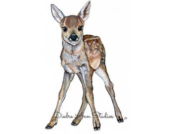 Baby Fawn - Baby Deer Nursery Fine Art Print - SKUWC103