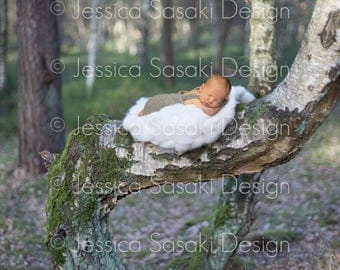 Digital background Newborn composing forest, instant download