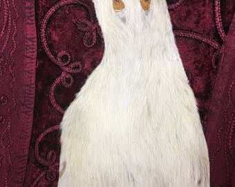 Large white rat pelt with face