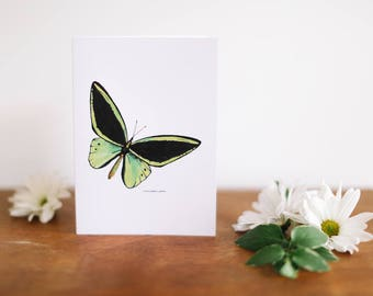 Thank You Green Butterfly Greeting Card and Note Card