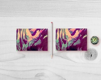 Rose Seriese | 4 - Cards  (photographic cards)