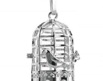 Fashion bird cage