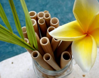 Bamboo straws set of 5 ecological and reusable + cleaning brush!