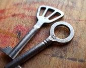 Antique Skeleton Keys - Starshine Set // Holiday PreSale - Save 10% - Coupon Code HOLIDAZE