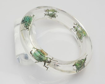 Transparent lucite bracelet with five exotic real insects