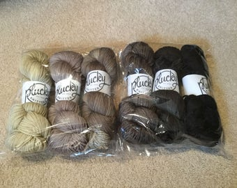 The Plucky Knitter Rustic Yarn - 6 skein gradient