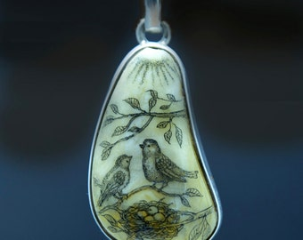 Original Scrimshaw bird and nest on Baltic Amber pendant
