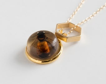 Real Bee Necklace - Honeybee Jewelry - Specimen Jewelry - Natural History - Biology Jewelry - Gold Bee - Insect Jewelry - Taxidermy Necklace