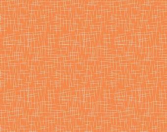 Hash Tag Large Color Pumpkin (C115)