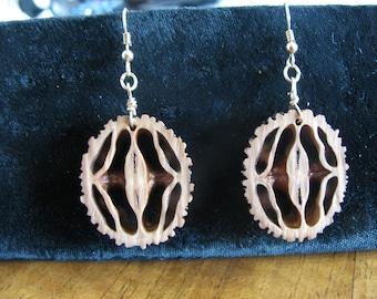 Handcrafted Black Walnut Pierced Earrings