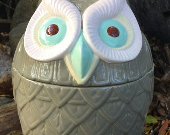 Owl cookie jar,  treat jar, owl decor, taupe, sage, light pink, chocolate
