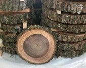 Rough Cut Red Oak Tree Slices With Bark, Moss and Fern Made From Storm Damaged Trees