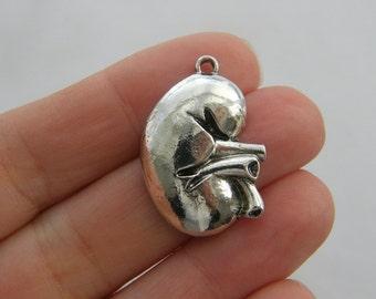 BULK 10 Human kidney organ charms antique silver tone MD91