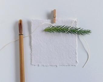 Boxed Deckle Edge Notecards Cotton Paper