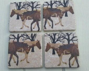 Woodland Horses Coaster Set of 4 Tea Coffee Beer Coasters