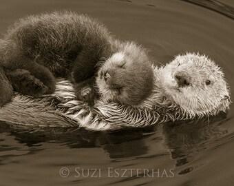 BABY SEA OTTER and Mom Photo, Vintage Sepia Print, Animal Nursery Decor, Mom and Baby Animal Photography, Wildlife, Wall Art, Otter Pup