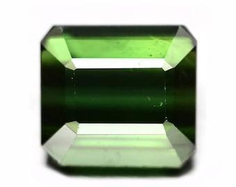 TOURMALINE (34151) * * * Forest  Green 7.1 x 6.5mm Emerald Cut Tourmaline - Faceted