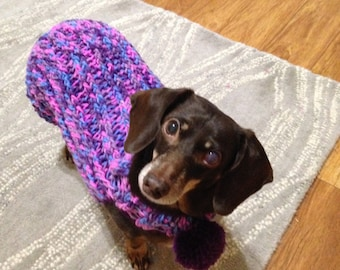 Dachshund colorfull sweather